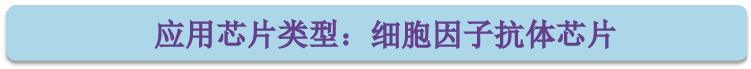 应用芯片类型-细胞因子抗体芯片.png