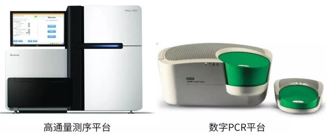 上海生物芯片2.jpg
