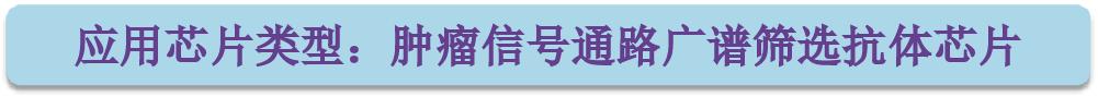 应用芯片类型-肿瘤信号通路广筛.png