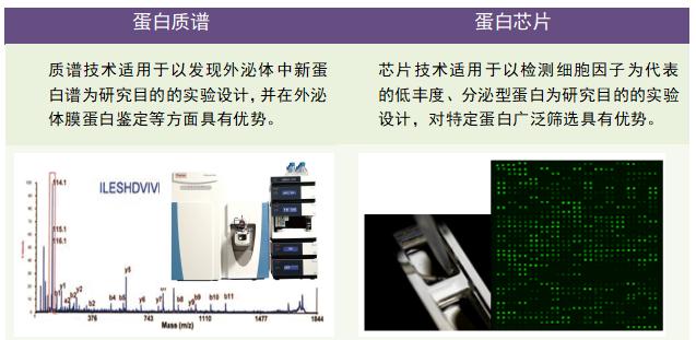 外泌体蛋白组研究平台-04.png