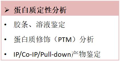 蛋白质定性分析.png