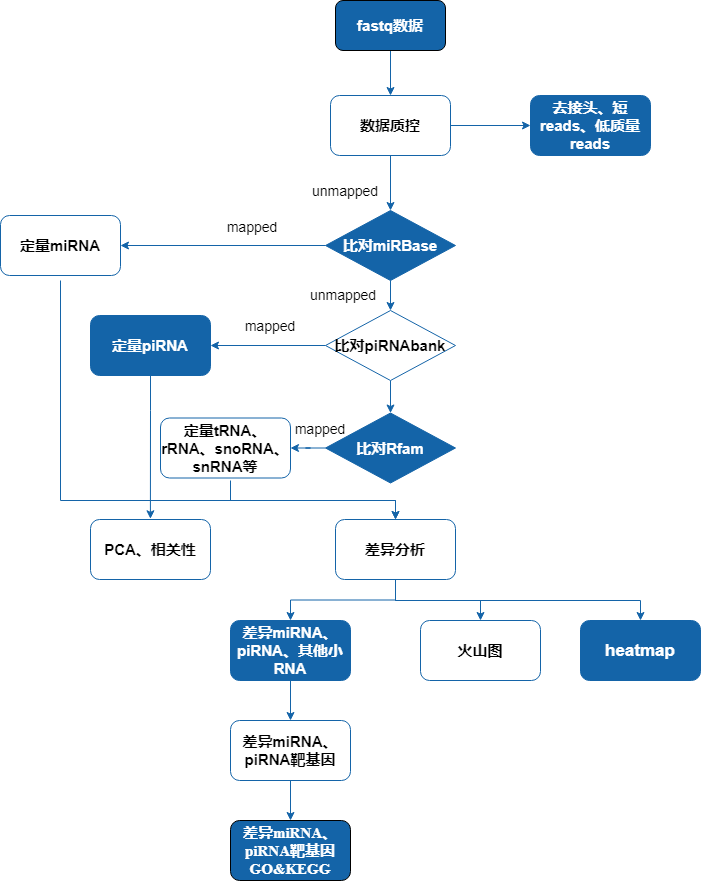 Untitled Diagram(1).png