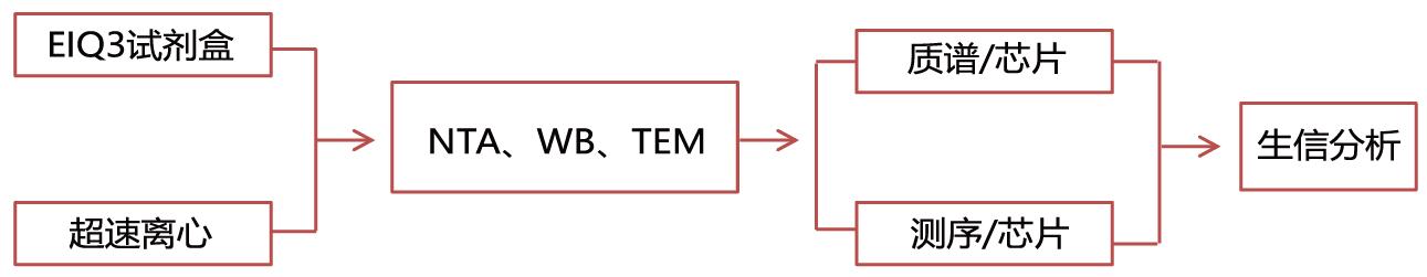 外泌体服务流程图.png
