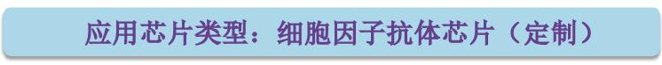应用芯片类型-定制细胞因子抗体芯片.png